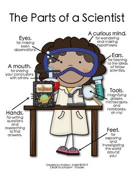 The Parts of a Scientist  by Andrea Knight #Illustration #Scientist