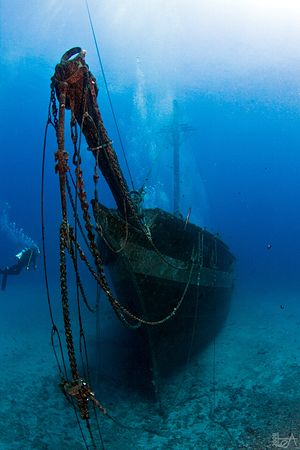 This beautiful wreck was sunk in 2005, in Lahaina, Maui