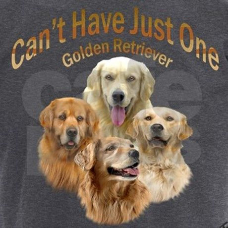 Cant Have Just One Golden Retriever Men S Dark Pajamas Wedding