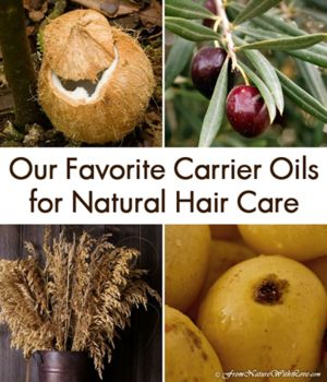 Our Favorite Carrier Oils for Natural Hair Care | The Natural Beauty in Workshop