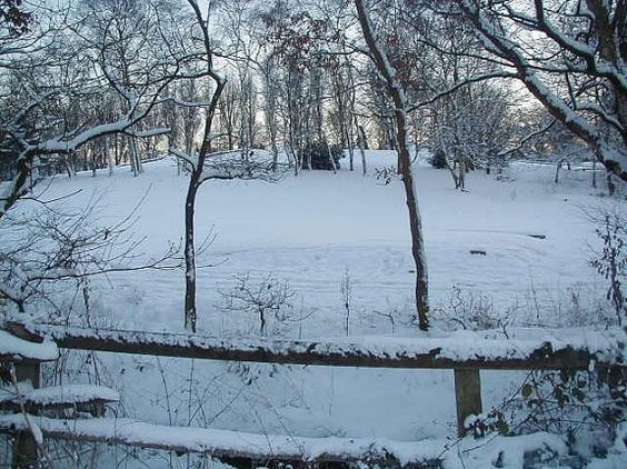 Written by contributor Kris Bales of Weird, Unsocialized Homeschoolers. Winter doldrums. Winter Blues. Cabin fever. I was not going to write about this seasonal phenomenon because I've seen it mentioned on several other blogs recently. It's been covered, right? But I've been feeling a little blah myself lately. It hasn't been as bad as I've …