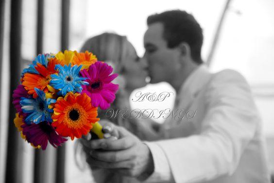 Los colores visten y dan vida a nuestras imagenes.