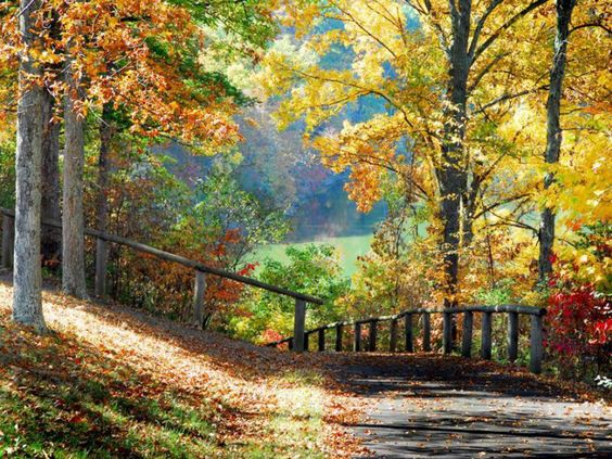 Image Detail For -Autumn Scenery Wallpaper