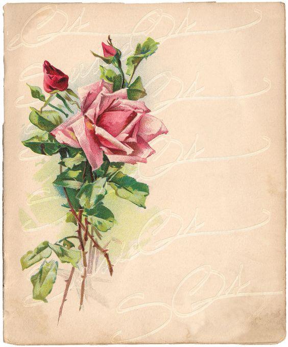 Vintage Victorian Rose Rose Full Color