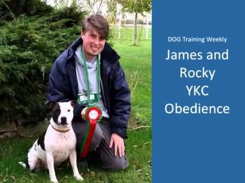 DOG Training Weekly issue 45