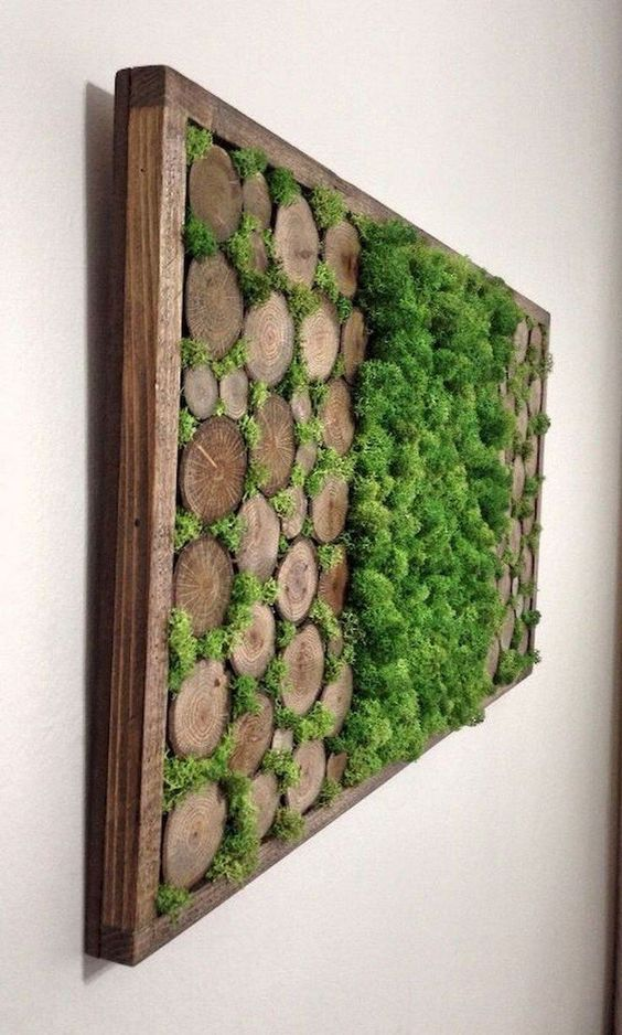 Diy Living Wall Quick Easy Very Low Maintenance Edible Walls Living Wall Diy Plant Wall Diy Moss Wall Art