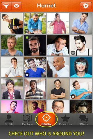 Echelon Magazine Blog: Gay Mobile Social Network Hornet Is Fabulous