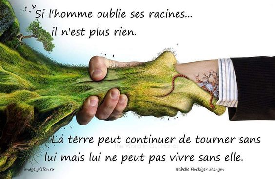 si l'homme oublie ses racines ....