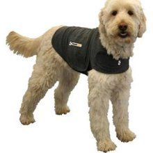 doggie straight jacket | How Am I Living Without These Products