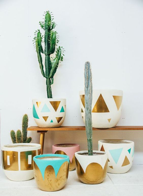 Gardens beautiful and l 39 wren scott on pinterest for Cactus in pots ideas