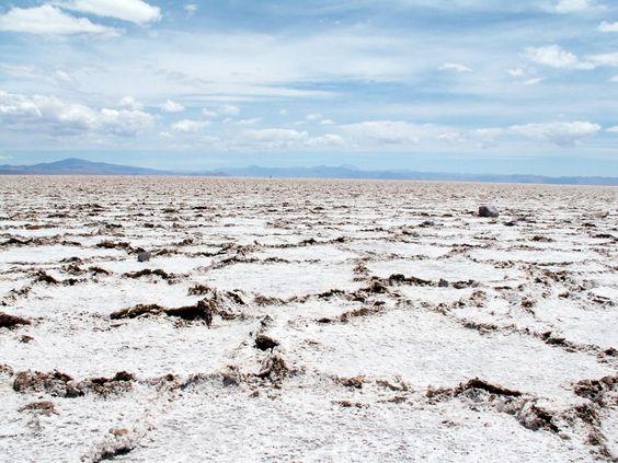 Argentine: désert de sel / Argentina: salt desert / Argentina: desierto de sal