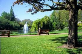Voy al parque por a pie para andar.