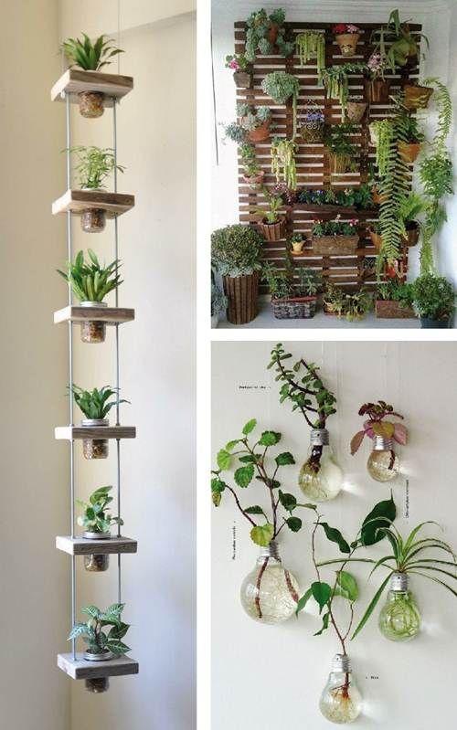 Jardim Suspenso: 38 Inspirações Arrasadoras para Montar! – Decoração de Casa