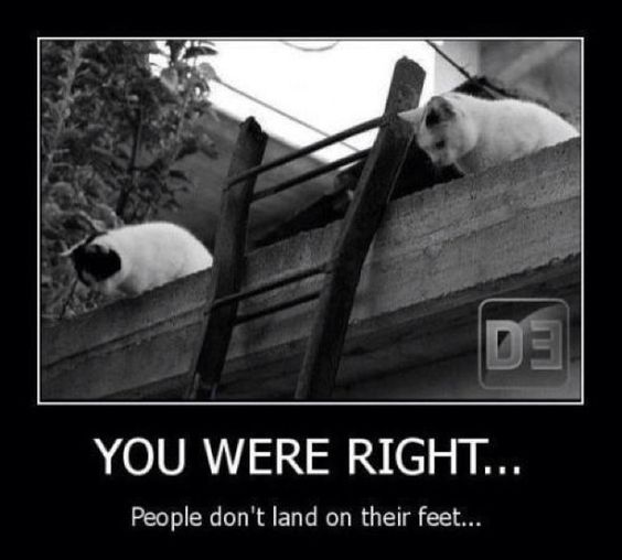 so, people don't land on their feet