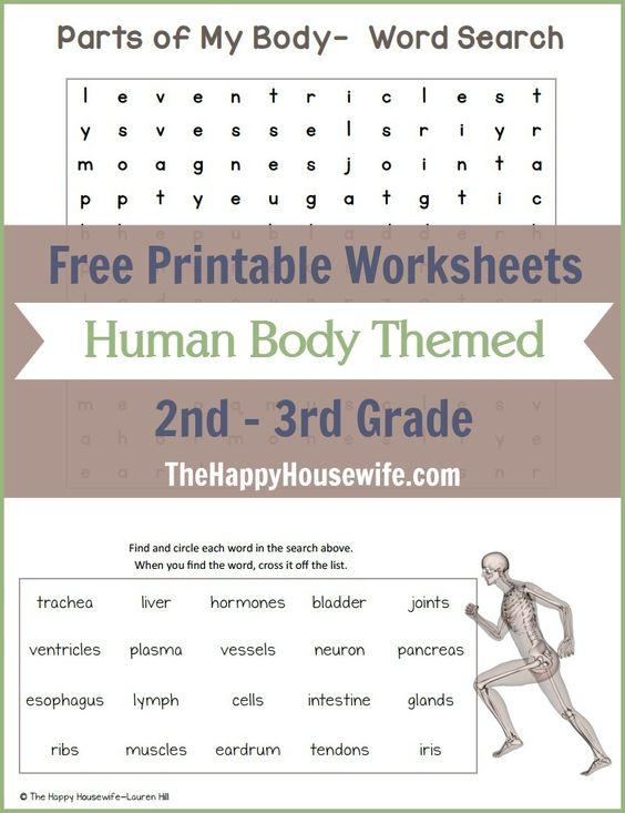 Free Printable Worksheets 2nd Grade Art : Activities language and free printables on pinterest