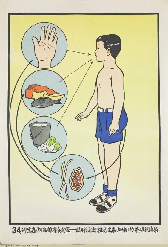 Vintage Printables: Public Health Poster, Taiwan, 1959.