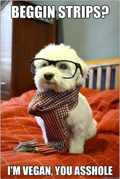 hipster doggie :)