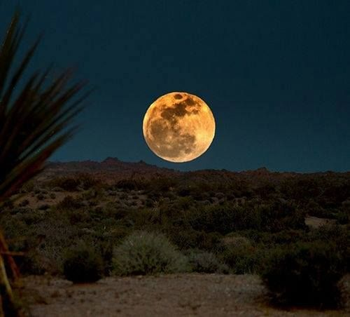 Mooning Over New Missoni: Moon Over The New Mexico Desert