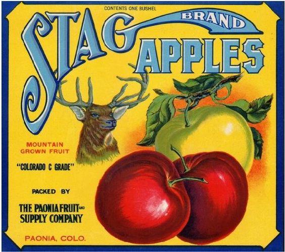 Tasmanian Apple Labels Vintage Art Australian Fruit Case Wall Poster set -E 12