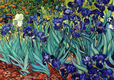 """""""Irises, Saint-Remy, 1889,"""" by post-Impressionist Grand Master Vincent Van Gogh (1853 – 1890), depicts the garden of the hospital where he was a recuperating, and was painted a few months before he died."""