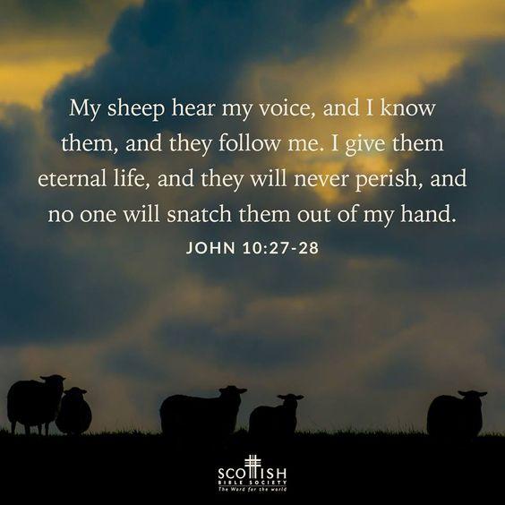 John 10.27 - 28