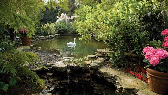 Swan Lake at Hotel Bel Air, California