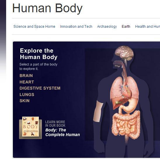 science health human body heart