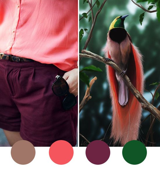 Colour Crush Emerald Green With Pink: Best Ideas About Plum Emerald, Taupe Coral And Colors