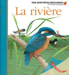 La rivière - Mes premières découvertes, nouvelle présentation - Livres pour enfants - Gallimard Jeunesse