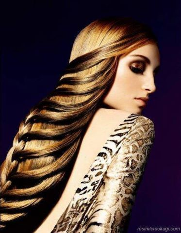 Pretty Looking Savvy Braided Hair !!