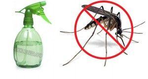 Prirodan sprej protiv komaraca i zamka