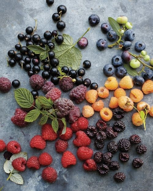 Different colored berries.