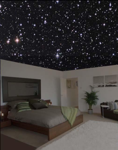 Starry night ceiling bedroom pinterest starry nights ceiling design and a house for Starry night lights for bedroom