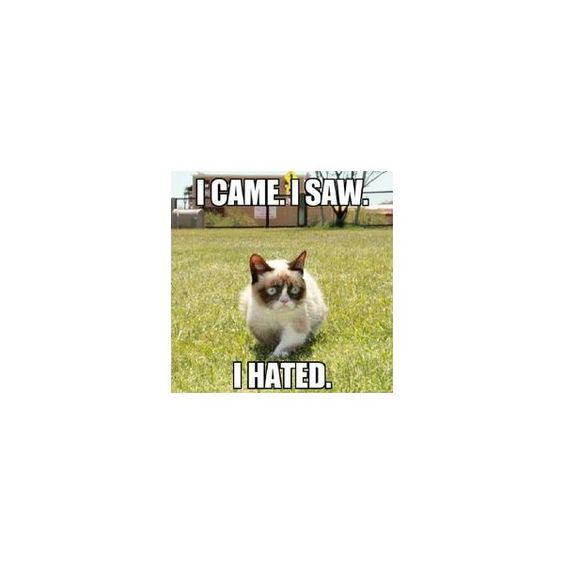 Grumpy cat ❤ liked on Polyvore featuring backgrounds, quotes, phrase, saying and text