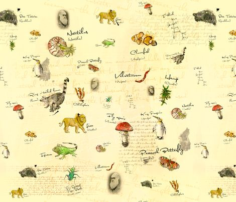 "Charles Darwin fabric by Lisa Brown on Spoonflower - Custom fabric uses animal and plant illustrations drawn with ink and fountain pen and text from Darwin's treatise on evolution ""On the Origin of Species""."