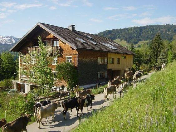 Wälderhaus-Apartments | Almabtreib in Schwarzenberg,