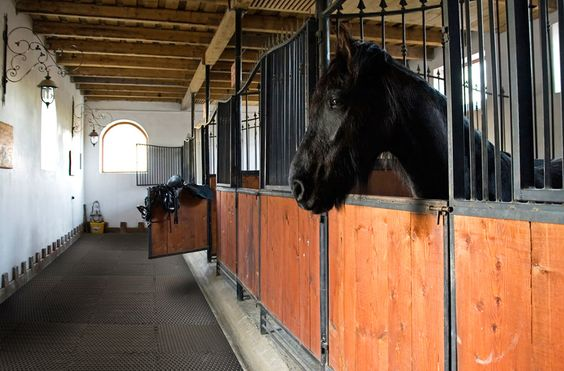 Stalls Horses And Flooring On Pinterest