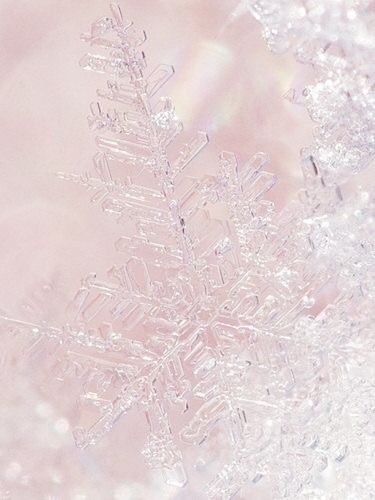 snowflakes frozen wallpaper and pink on pinterest