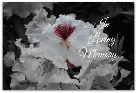 Verses for sympathy cards can provide the perfect condolence message. You can simply hand write a sympathy verse into a blank condolence card and then sign your name. These verses are also great for handmade sympathy cards. More Sympathy Verses …
