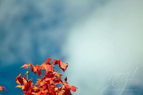In Heaven: Autumn