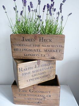 Love these old antique crates for storing stuff in, just need some more space in my house!