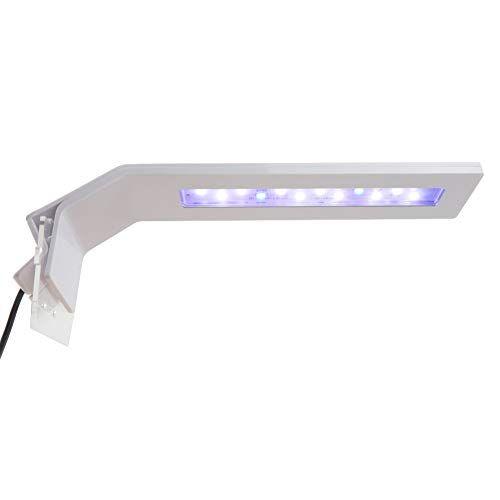 Goobat Nano Clip On Led Light For Aquarium Blue And White Leds Lighting For 11 To 15 Inch Fish Tanks Dimmable Brightne Led Lights Fish Tank Aquarium Lighting