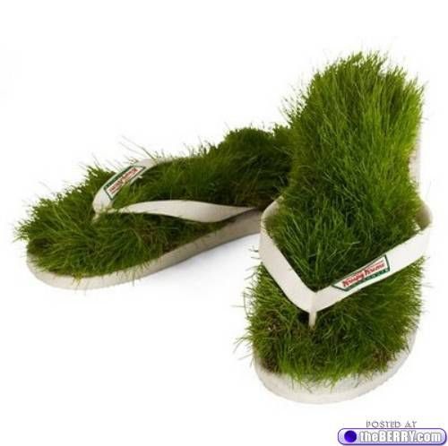 Now I know what to do with my old flip-flops (Sprout wheat grass, yummm)