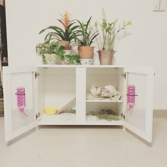 Indoor rabbit hutch crafts pinterest lakes guinea for How to make a rabbit hutch from scratch