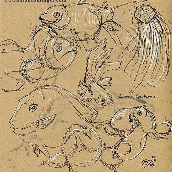 Morning! Happy #fishfriday . Also more fish coming soon! I'm going to the #newenglandaquarium on Mon. :) #fish #art #fishart #fishofinstagram #fishoftheday #sketch #sketchbook #jellyfish #bettafish #betta #gellyroll #micron #sarahdahlingerart #gesturedrawing #wildlife #wildlife_seekers