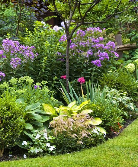 Staudenbeete im Frühjahr auf die Saison vorbereiten Gardens - vorgarten anlegen nordseite