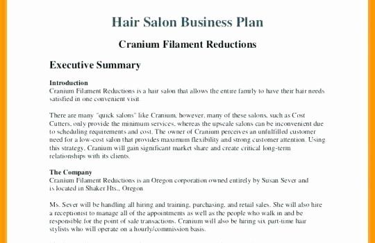40 Hair Salon Business Plans With Images Hair Salon Business