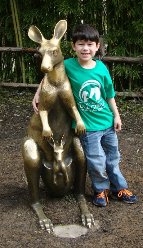 Kangaroo Boy: