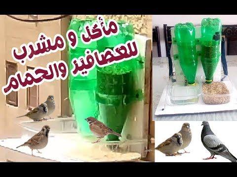 صنع مأكله ومشرب للعصافير والحمام والطيور الخارجية Diy Youtube
