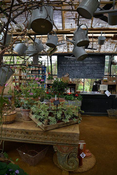 Petersham Nursery Garden Nursery Garden Center Displays Home